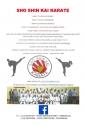 Karate_Poster